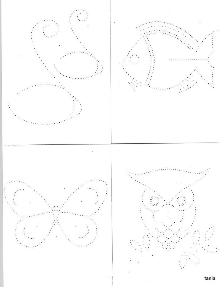 Madeira-patterns-animals.jpg