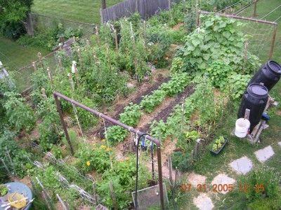 backyard vegetable garden design small vegetable gardensvegetable