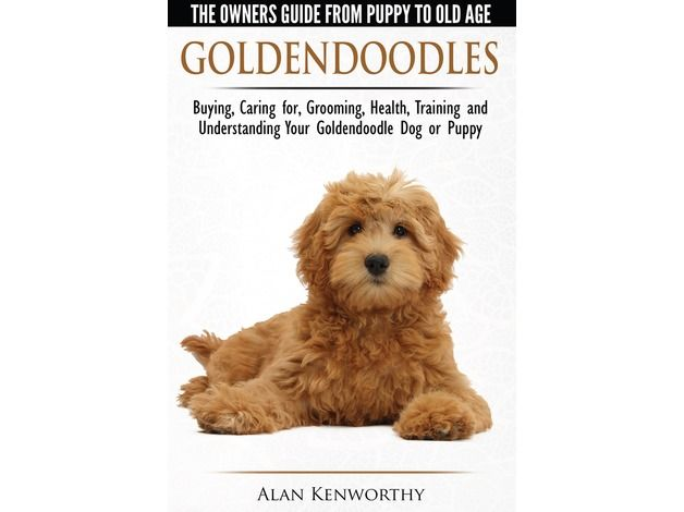 This best-selling book by is listed on eBay, Amazon and all major bookstores worldwide and this copy is brand-new and postage is free and included in the price of £8.95. Goldendoodles - The Owners Guide from Puppy to Old Age is a must-have book for any r