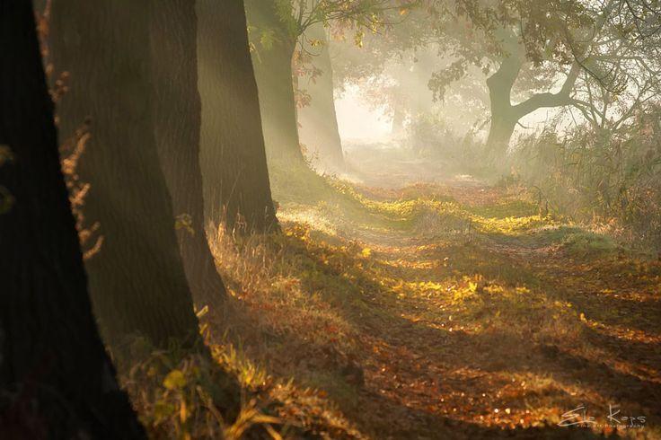 ***Jesień [autumn] (Poland) by Mist73 - 500px