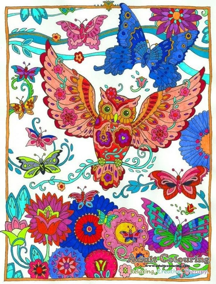 Creative Haven Owls Colouring TechniquesAdult ColoringColoring BooksBook CollectionCreative