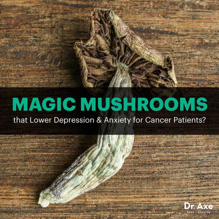 Magic mushrooms - Dr. Axe http://www.draxe.com #health #holistic #natural