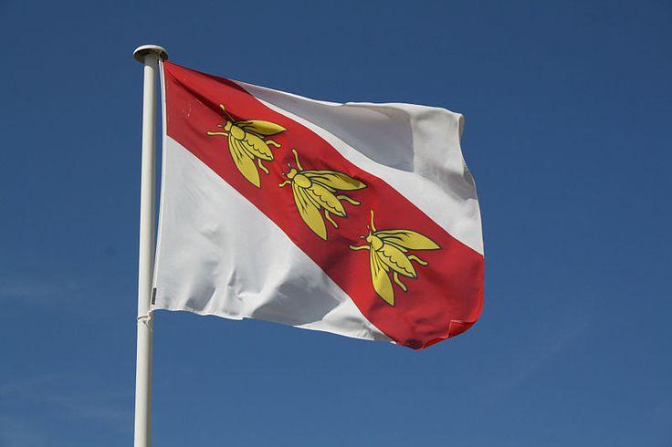 Flag of Elba