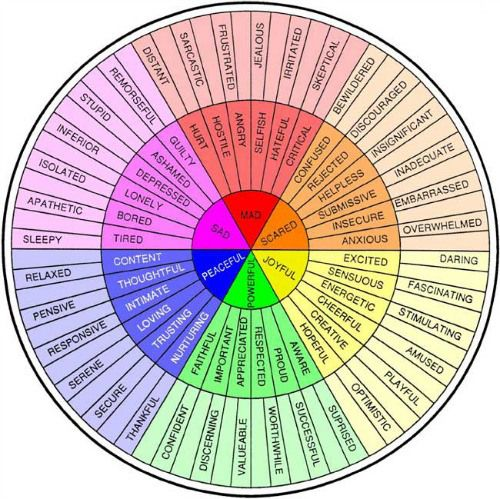 Colour Feelings Wheel displaying not only the evident feelings but the possible underlying causes
