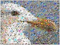 Recently I wanted to create a photo mosaic for one of my friends' birthday. In case you don't know, a photo mosaic is a picture that has been divided into (usually equal sized) rectangular sections, each of which is replaced with another photograph of appropriate average color. Looks quite good and special, especially if you…