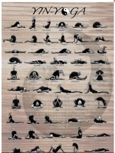 93 best yin yoga images on pinterest  yoga poses yoga