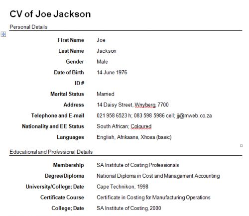 CV template