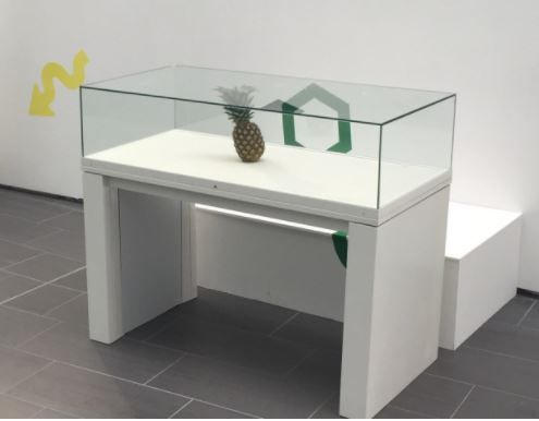 En 2017, estudiantes escoceses dejaron una piña en una exhibición del Robert Gordon University. Cuando volvieron unos pocos días después, descubrieron que los administradores de la exhibición habían tomado la piña por una pieza de la muestra, y estaba protegida por una caja de cristal