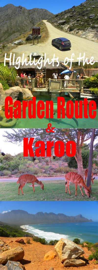 Highlights of a fantastic road trip through South Africa: http://bbqboy.net/highlights-2-week-road-trip-around-garden-route-karoo-south-africa/ #gardenroute #southafrica
