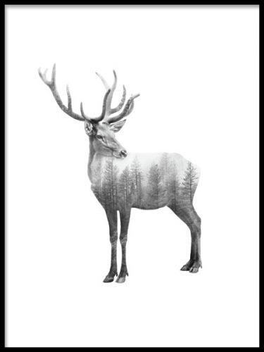Forest Deer, poster. Affisch med svartvit ren. En svartvit poster med en ren/hjort och inslag av skog. Modern fotokonst som passar utmärkt i någon av våra fina ramar och perfekt då du vill skapa en stilren men intressant vägg.