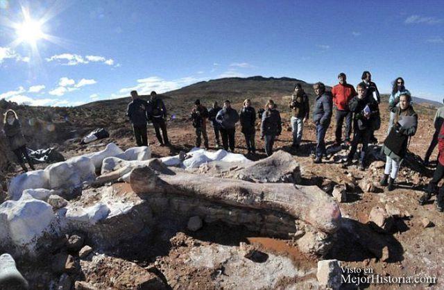Paleontólogos han desenterrado en Argentina huesos fosilizados de lo que se dice que es la criatura más grande que alguna vez estuvo en la tierra, u... Ver mas: http://www.mejorhistoria.com/argentina-dinosaurio/