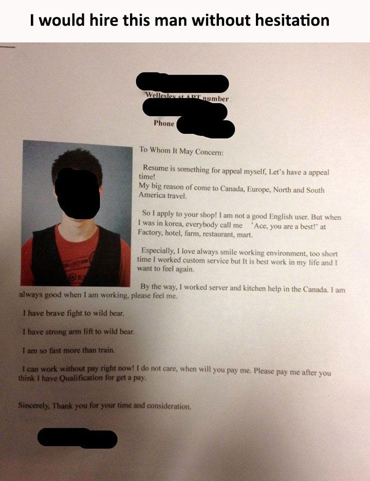 formal letter format to whom it may concern%0A    Really Funny Memes Humor That Will Make You Laugh  Cover Letter ExampleBest