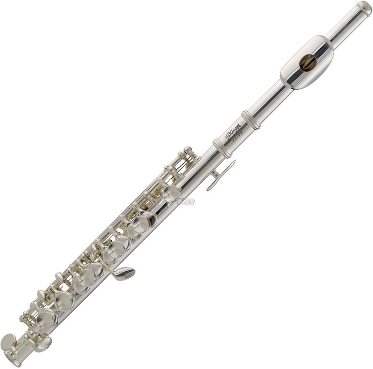 I played a flute most of my school years but the piccolo was my favorite instrument to play