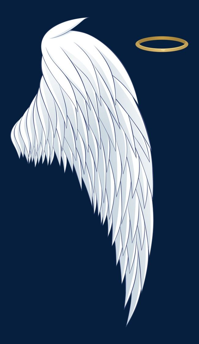 White Angel Wings And A Halo Angel Wings Drawing Angel Wings Clip Art Wings Drawing