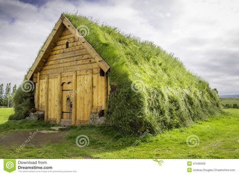 Image result for real viking houses