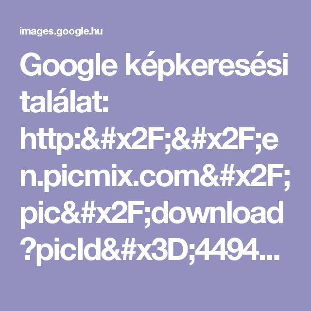 Google képkeresési találat: http://en.picmix.com/pic/download?picId=4494267&key=ca42f