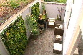 Verticale beplanting | Eigen Huis & Tuin
