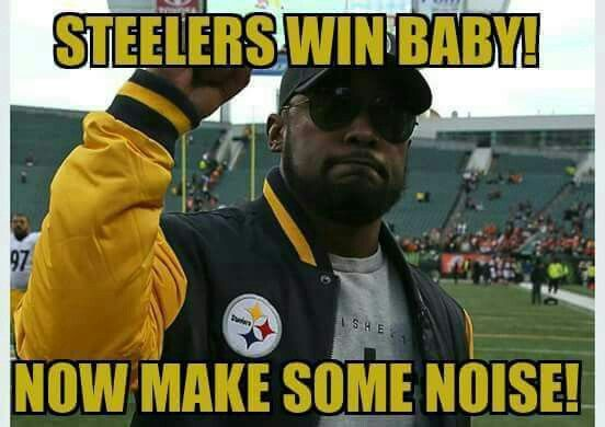 STEELERS BEAT THE PANTHERS 17-14   HELL YEAH!!!!