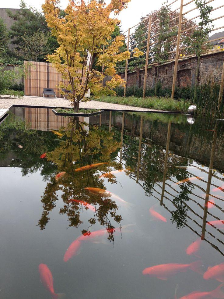 10 best images about vijver waterpartij on pinterest On vijver strak