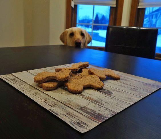 Homemade Low Fat Dog Treat Recipe Prep Dog Fat Dogs Dog Treat
