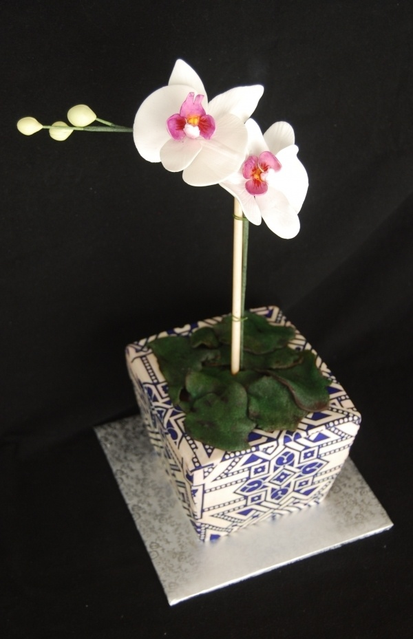 Potted Orchid cake  By: Marniela