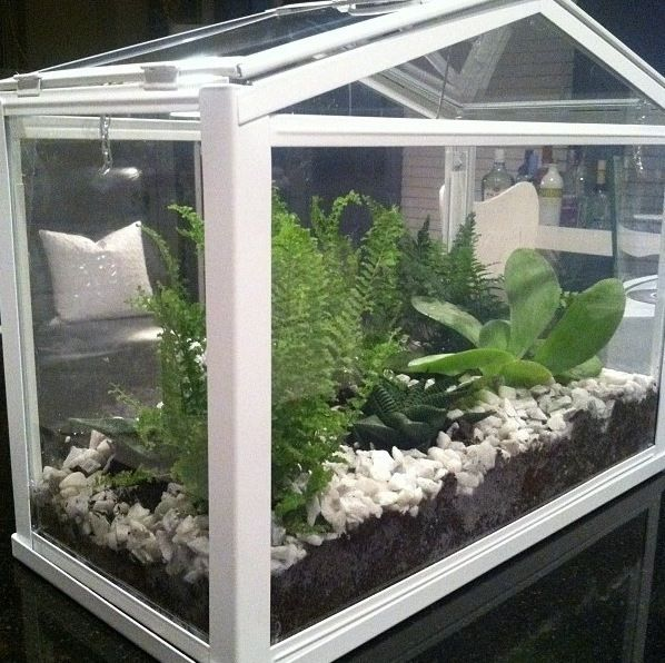 Perfect Affordable Mini Greenhouse Ikea Good Looking