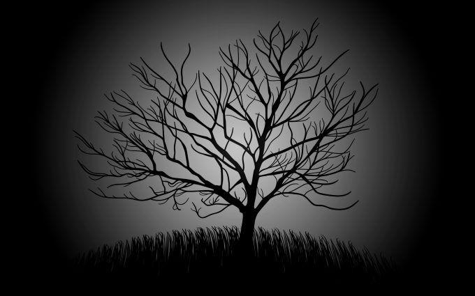 Dead Tree Minimal 4K Wallpaper