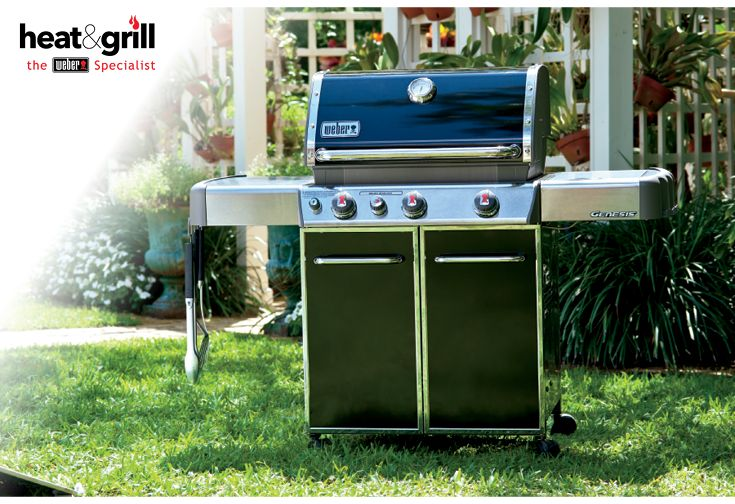 20 Best Images About Weber BBQ On Pinterest