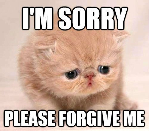 Sad Sorry Images: Ghim Của Ransella Trên LOL Quotes