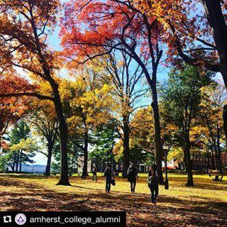 My Amherst | Amherst College