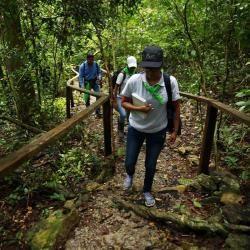 Un sendero en el Parque Nacional Chagres, donde es  posible conocer la fauna y los grupos humanos que habitan en las riveras del Canal de Panamá.