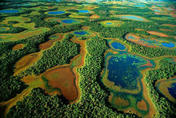 Pantanal: esta enorme enorme llanura aluvial se encuentra al sudoeste de Brasil, siendo la zona fronteriza en partes con Bolivia y Paraguay. Desde la ciudad de Cuiabá se pueden adquirir tours a la zona para el avistaje de la flora y fauna.