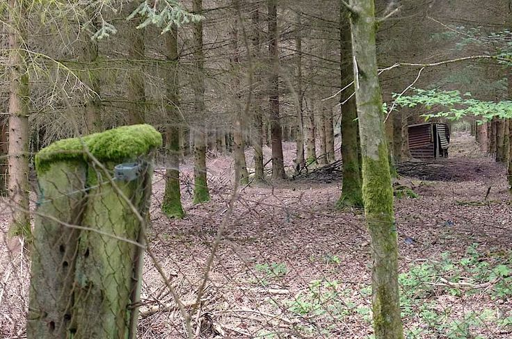 Ardennen Goed - Objecten (Huizen en onroerend goed in de franse ardennen)