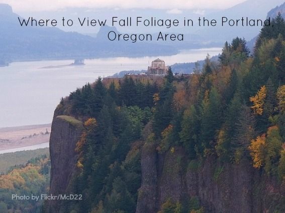 17 Best Images About Autumn Foliage In Oregon On Pinterest