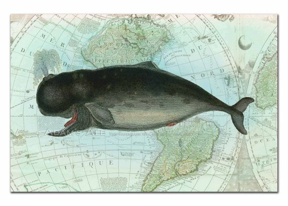 Whale On Vintage Map Giclee Poster Nautical Art Print  Mixed Media Digital Collage From Vintage Scientific Illustrations