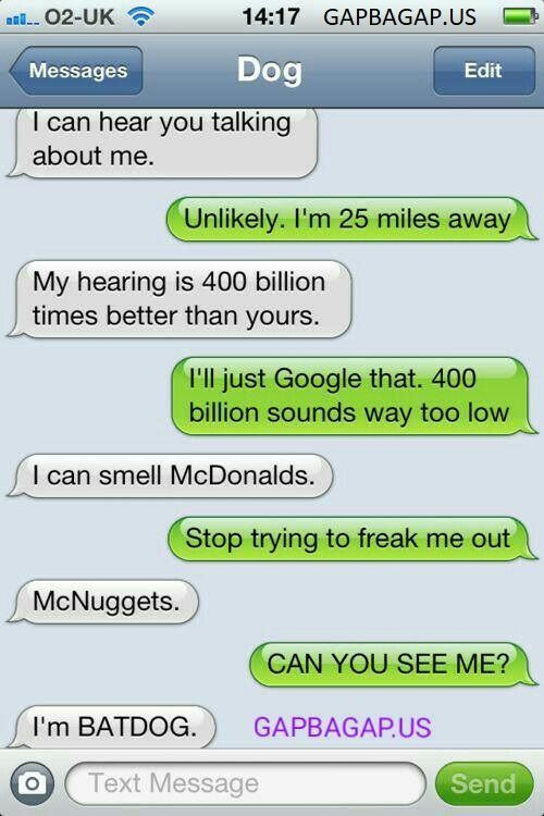 Top 11 #FunnyTexts Collection ft. Funny Dogs