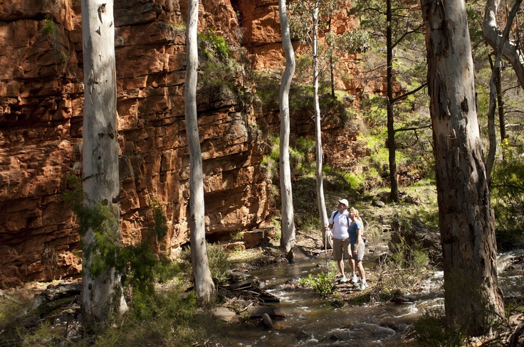 Hiking in Alligator Gorge, South Australia. Discover this spectacular natural attraction in the Southern Flinders Ranges. Explore the various network of walking trails surrounding the gorge, take a picnic or enjoy a barbecue amongst Australia's natural beauty.