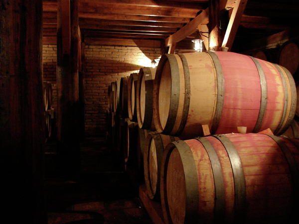 Colchagua Valley Wine Barrels, Chile