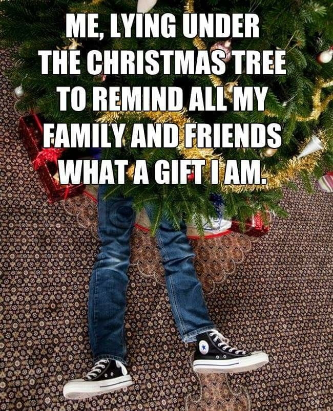 Christmas Humor, Holiday Treats, Holiday Decor, White Christmas, Christmas  Holidays, Funny Clips, Random Humor, Funny Sayings, Adult Humor