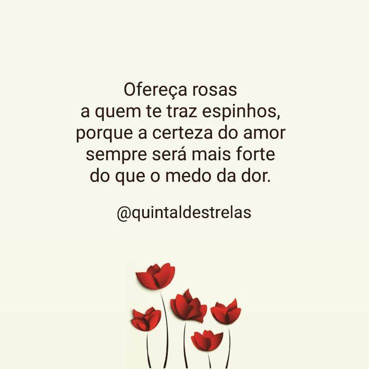 """1,798 curtidas, 4 comentários - Quintal de Estrelas (@quintaldestrelas) no Instagram: """"O amor tudo cura, tudo protege e a tudo pacifica. #amor #cura #paz #boanoite #positividade…"""""""