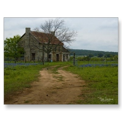 Texas farm house with bluebonnets