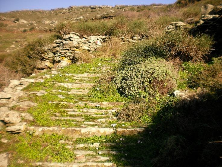 Trekking in Andros.