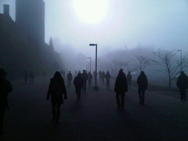 "This was my walk at university... ""The walking Debt"""