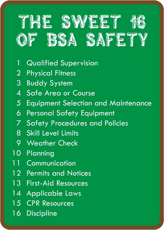 11 best Venturing images on Pinterest Boy scouting, Boy scouts - bsa health form
