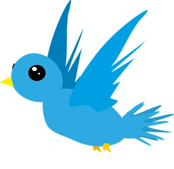 Vogel, Dierlijke, Blauwe, Vliegen