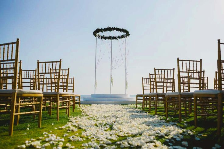 100 Gold tiffany chairs for wedding ceremony