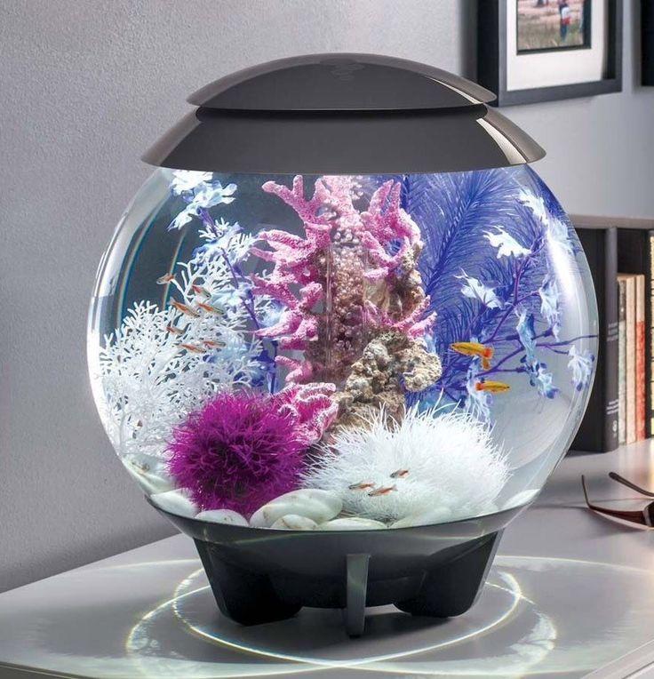 17 best ideas about biorb fish tank on pinterest plant for Aquarium decoration set