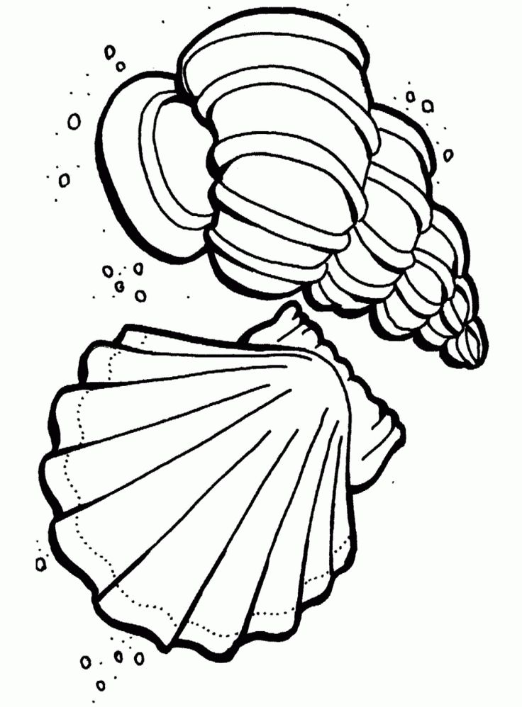 oceans coloring pages - 25 best ideas about ocean coloring pages on pinterest
