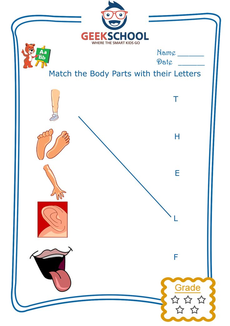three letter body parts 42 best images about parts of the on all 1669