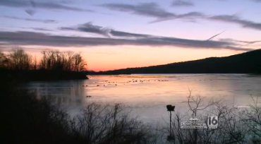 Take in the sights and sounds of the annual snow goose migration at the Pennsylvania Game Commission's Middle Creek Wildlife Management Area.